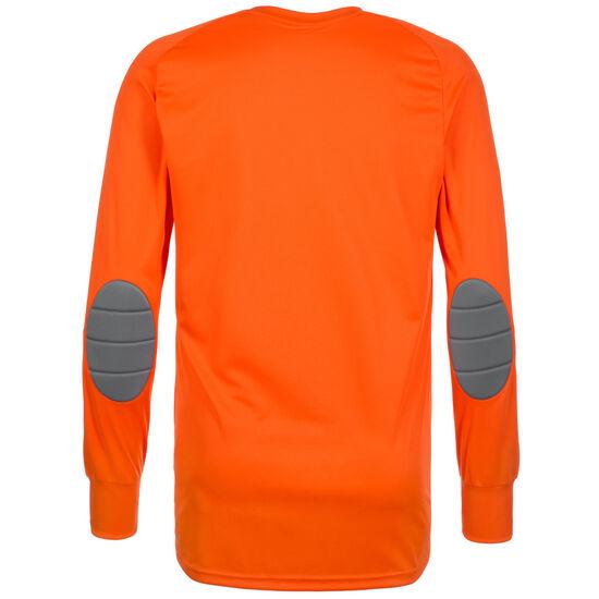 Assita 17 Torwarttrikot Herren, orange / grau, zoom bei OUTFITTER Online