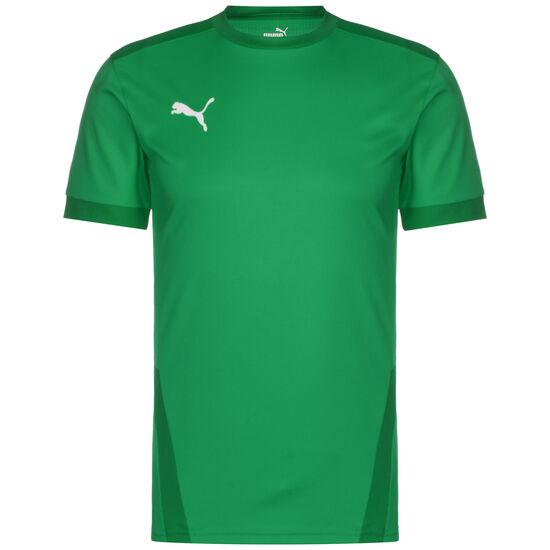 teamGoal 23 Fußballtrikot Herren, dunkelgrün / grün, zoom bei OUTFITTER Online