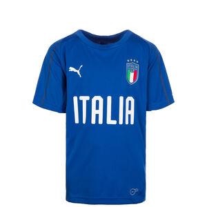 FIGC Italien Trainingsshirt WM 2018 Kinder, Blau, zoom bei OUTFITTER Online