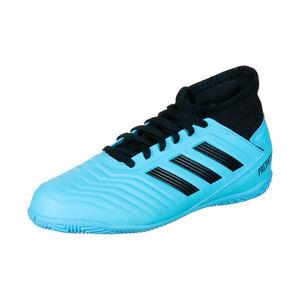Predator 19.3 Indoor Fußballschuh Kinder, hellblau / schwarz, zoom bei OUTFITTER Online