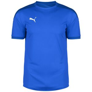 TeamFINAL 21 Trainingsshirt Herren, blau, zoom bei OUTFITTER Online