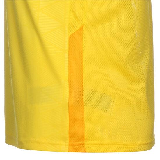 Trophy IV Jersey Fußballtrikot Herren, gelb / dunkelgelb, zoom bei OUTFITTER Online