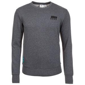 DFB Street Graphic Crew Sweatshirt WM 2018 Herren, Grau, zoom bei OUTFITTER Online