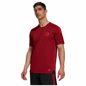 FC Bayern München Trainingsshirt Herren, rot, zoom bei OUTFITTER Online