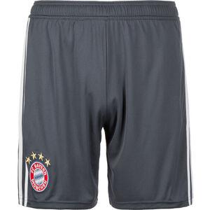 FC Bayern München Short 3rd 2018/2019 Herren, Grau, zoom bei OUTFITTER Online