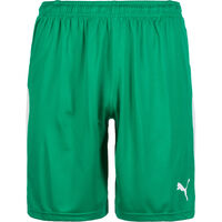 Liga Short Herren, grün / weiß, zoom bei OUTFITTER Online