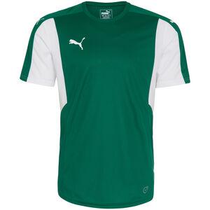 Dominate Fußballtrikot Herren, grün / weiß, zoom bei OUTFITTER Online
