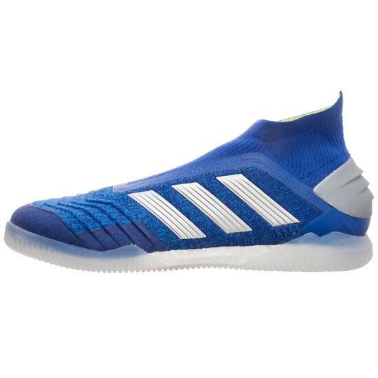 Predator 19+ Indoor Fußballschuh Herren, blau / silber, zoom bei OUTFITTER Online