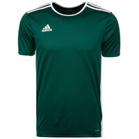 Entrada 18 Fußballtrikot Herren, dunkelgrün / weiß, zoom bei OUTFITTER Online