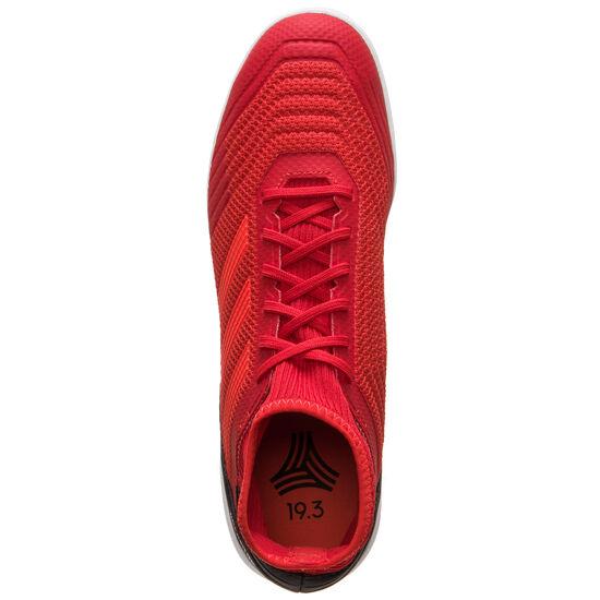 Predator Tango 19.3 Indoor Fußballschuh Herren, rot / schwarz, zoom bei OUTFITTER Online