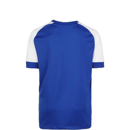 Champ 2.0 Fußballtrikot Kinder, blau / weiß, zoom bei OUTFITTER Online