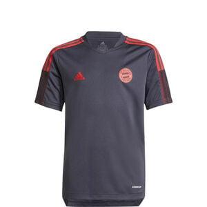 FC Bayern München Trainingsshirt Kinder, anthrazit / rot, zoom bei OUTFITTER Online