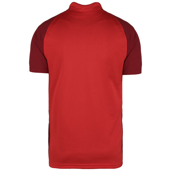 Trophy IV Jersey Fußballtrikot Herren, rot / dunkelrot, zoom bei OUTFITTER Online