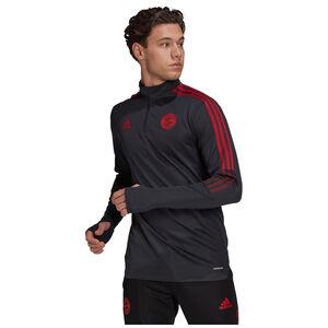 FC Bayern München Trainingssweat Herren, anthrazit / rot, zoom bei OUTFITTER Online