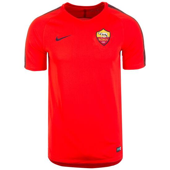 1d2c7507c5c244 Nike Performance AS Rom Breathe Squad Trainingsshirt Herren bei ...