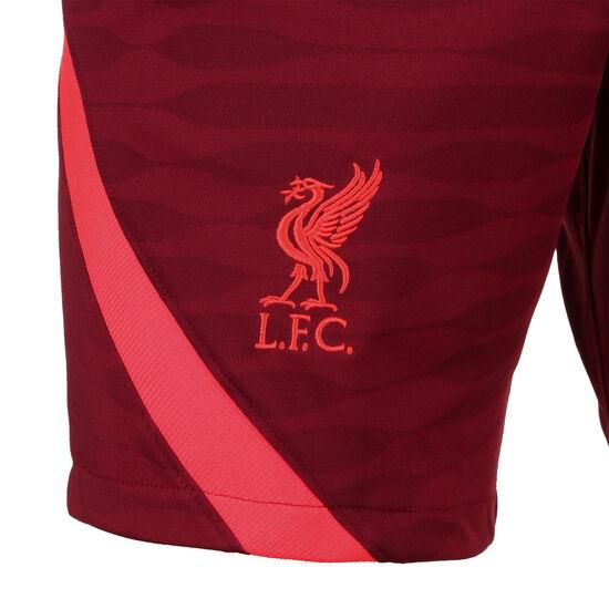 FC Liverpool Strike Trainingsshorts Herren, weinrot / rot, zoom bei OUTFITTER Online