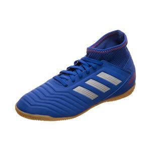 Predator 19.3 Indoor Fußballschuh Kinder, blau / silber, zoom bei OUTFITTER Online