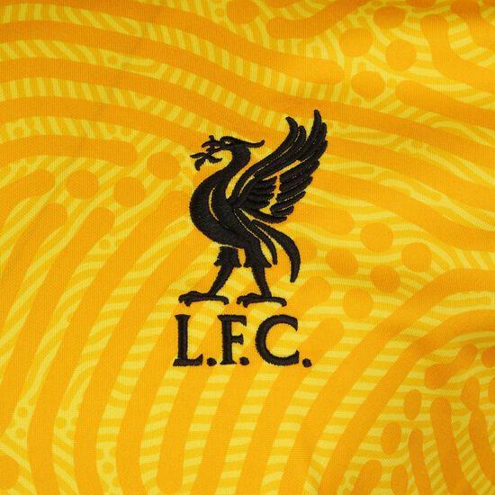 FC Liverpool Torwarttrikot Home Stadium 2020/2021 Herren, gelb / schwarz, zoom bei OUTFITTER Online