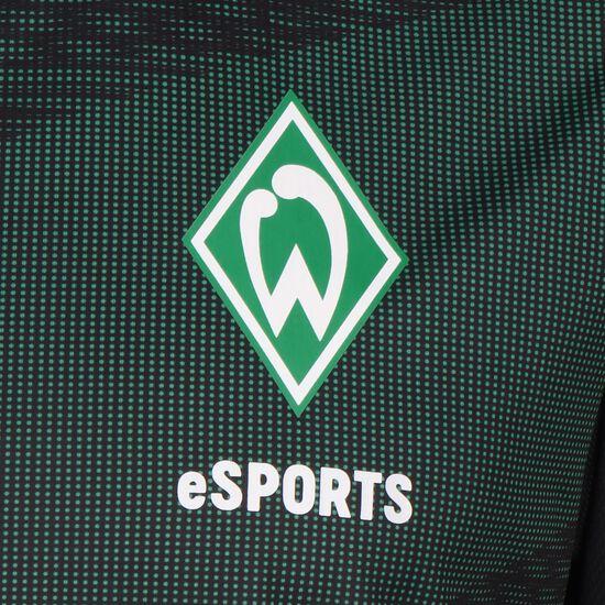 SV Werder Bremen eSports Trikot 2019/2020, schwarz / grün, zoom bei OUTFITTER Online