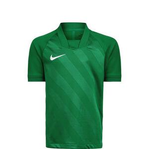 Dry Challenge III Fußballtrikot Kinder, grün / weiß, zoom bei OUTFITTER Online