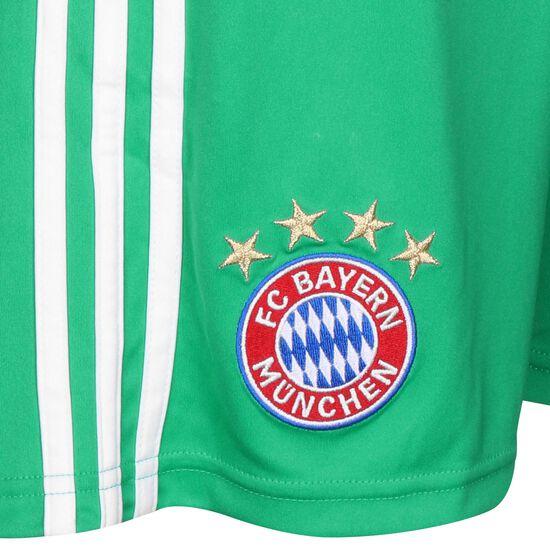 FC Bayern München Torwartshort Home 2019/2020 Herren, grün / weiß, zoom bei OUTFITTER Online