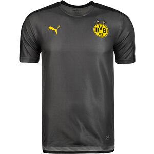 Borussia Dortmund Trainingsshirt Herren, Grau, zoom bei OUTFITTER Online