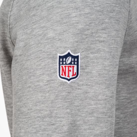 NFL Miami Dolphins Logo Kapuzenpullover Herren, Grau, zoom bei OUTFITTER Online