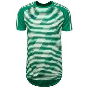 Tango Graphic Fußballtrikot Herren, grün, zoom bei OUTFITTER Online