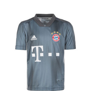 FC Bayern München Trikot 3rd 2018/2019 Kinder, Grau, zoom bei OUTFITTER Online