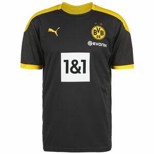 Borussia Dortmund Trainingsshirt Herren, anthrazit / gelb, zoom bei OUTFITTER Online