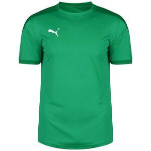 TeamFINAL 21 Trainingsshirt Herren, grün, zoom bei OUTFITTER Online