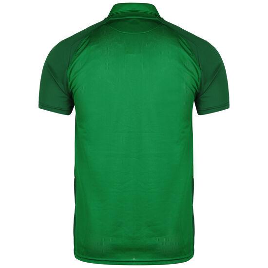 Trophy IV Jersey Fußballtrikot Herren, grün / dunkelgrün, zoom bei OUTFITTER Online