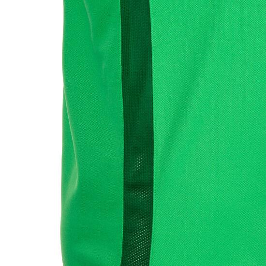 Dry Academy 18 Poloshirt Herren, grün, zoom bei OUTFITTER Online