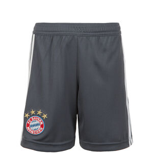 FC Bayern München Short 3rd 2018/2019 Kinder, Grau, zoom bei OUTFITTER Online