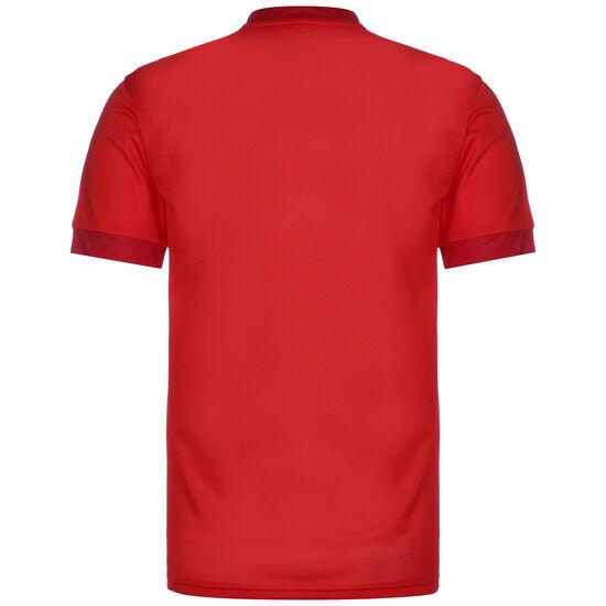 teamGoal 23 Fußballtrikot Herren, rot / dunkelrot, zoom bei OUTFITTER Online