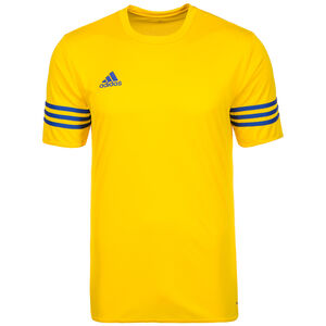 Entrada 14 Fußballtrikot Herren, gelb / blau, zoom bei OUTFITTER Online