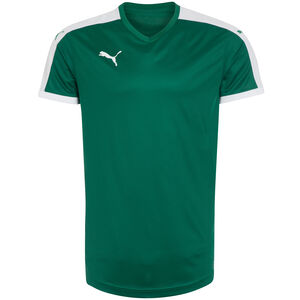 Pitch Fußballtrikot Herren, grün / weiß, zoom bei OUTFITTER Online
