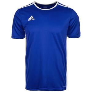 Entrada 18 Fußballtrikot Herren, blau / weiß, zoom bei OUTFITTER Online