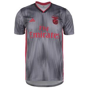 Benfica Lissabon Trikot Away 2019/2020 Herren, grau / rot, zoom bei OUTFITTER Online