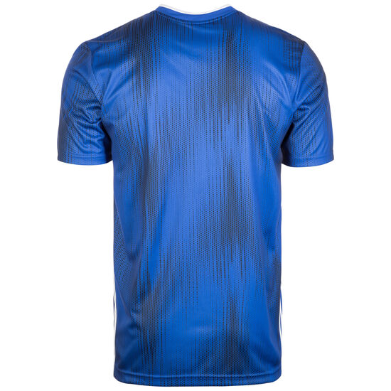 Tiro 19 Fußballtrikot Herren, blau / weiß, zoom bei OUTFITTER Online