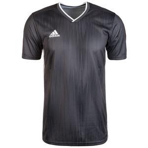 Tiro 19 Fußballtrikot Herren, grau / weiß, zoom bei OUTFITTER Online