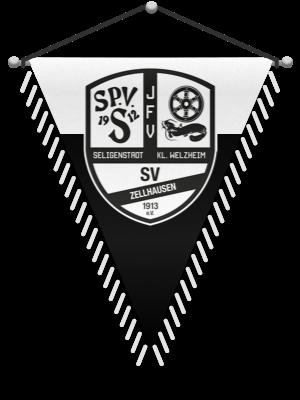 Wimpel JFV Seligenstadt